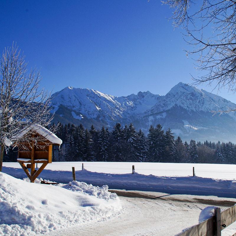Ausblick im Winter | Ferienhof Vogler in Fischen i. Allgäu