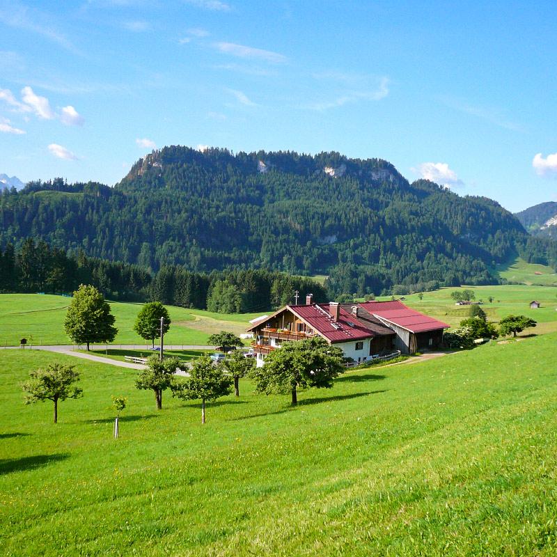 Ferienhof Vogler im Sommer | Ferienhof Vogler in Fischen i. Allgäu